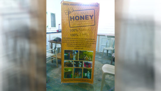 honey-production-corozal-03
