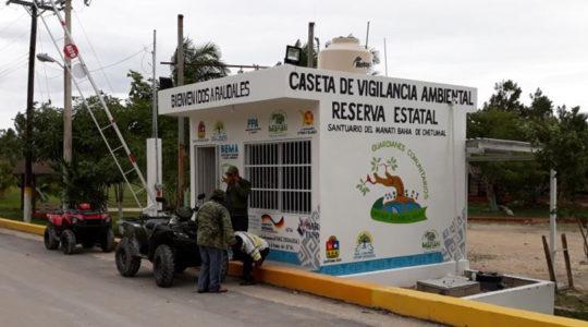 Los guardianes comunitarios del Santuario del Manatí son aliados en su protección