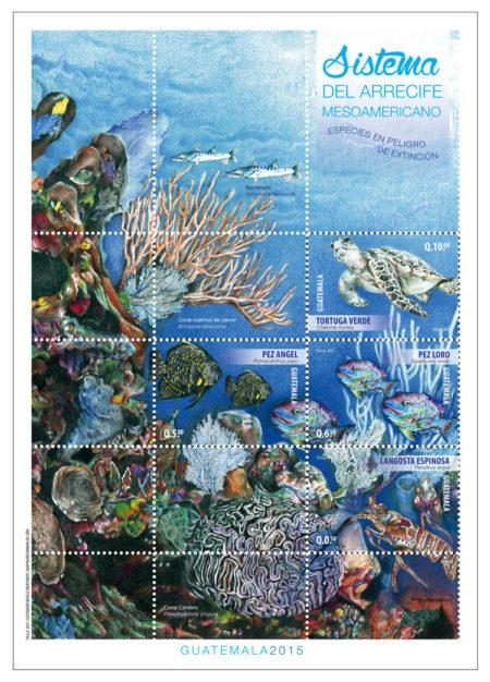 hojita-final-arrecife