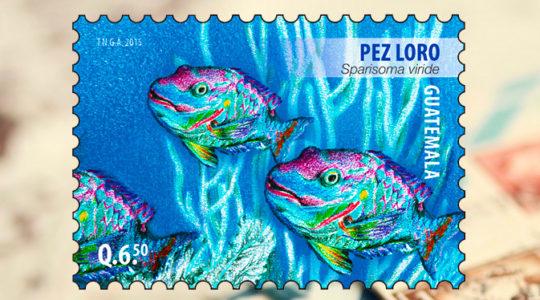 Postal Stamp for 10 Anniversary