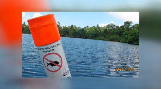 Fish Recovery Sites, Punta de Manabique Wildlife Refuge