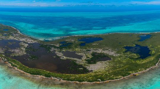 Promueven mejores prácticas para un turismo sustentable en el Sistema Arrecifal Mesoamericano