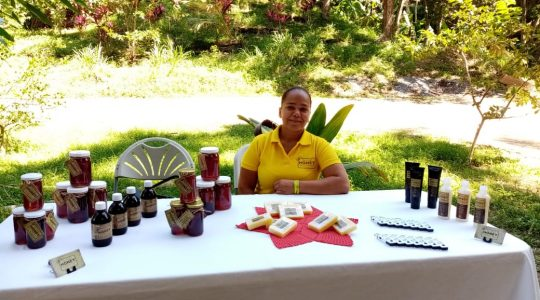 The apiculture project improves the lives of several families in the village of Corozal, in Roatan, Honduras