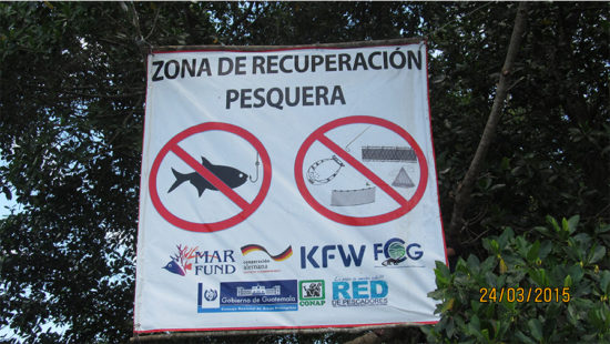 victories-guatemala-fish-recovery-site-05