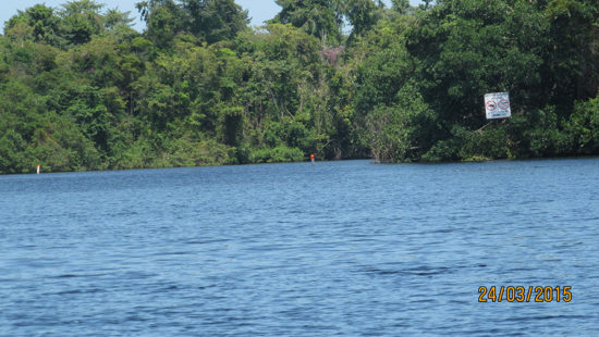 victories-guatemala-fish-recovery-site-06