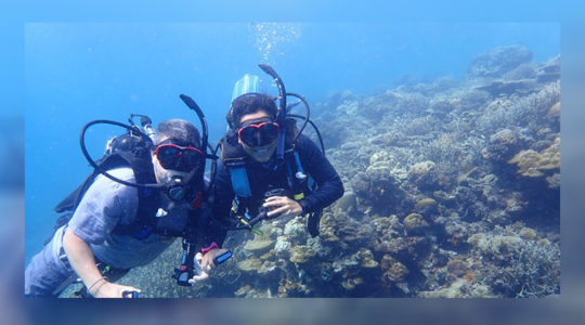 Exitosos restauradores de arrecifes
