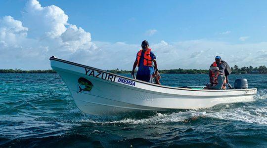 Vigilantes comunitarios protegen Zonas de Refugio Pesquero del Caribe mexicano